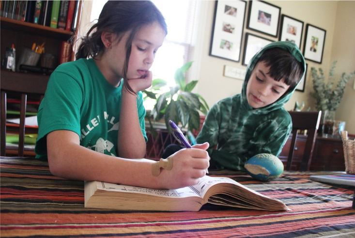 Photo of a girl and a boy studying at home